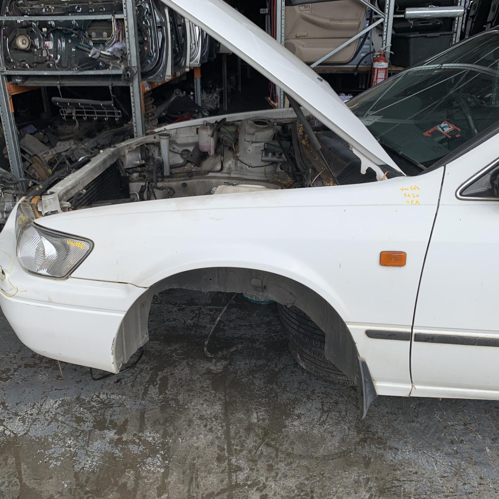 TOYOTA CAMRY, Left Guard, SK20, 08/97-08/02